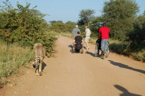 Epic Enabled accessible safari in the Kruger